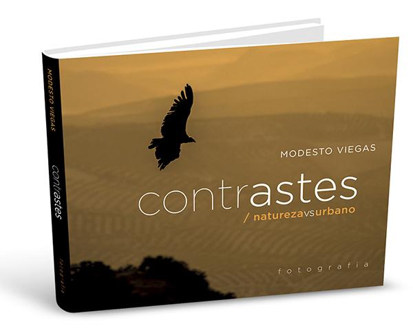 contrastes_3D_ok (blog)